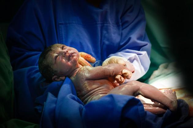 Nascimento - Maria Flor (30)