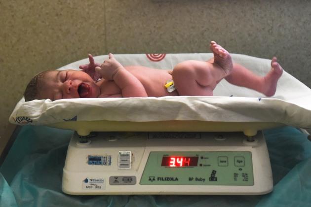 Nascimento - Nina (156)